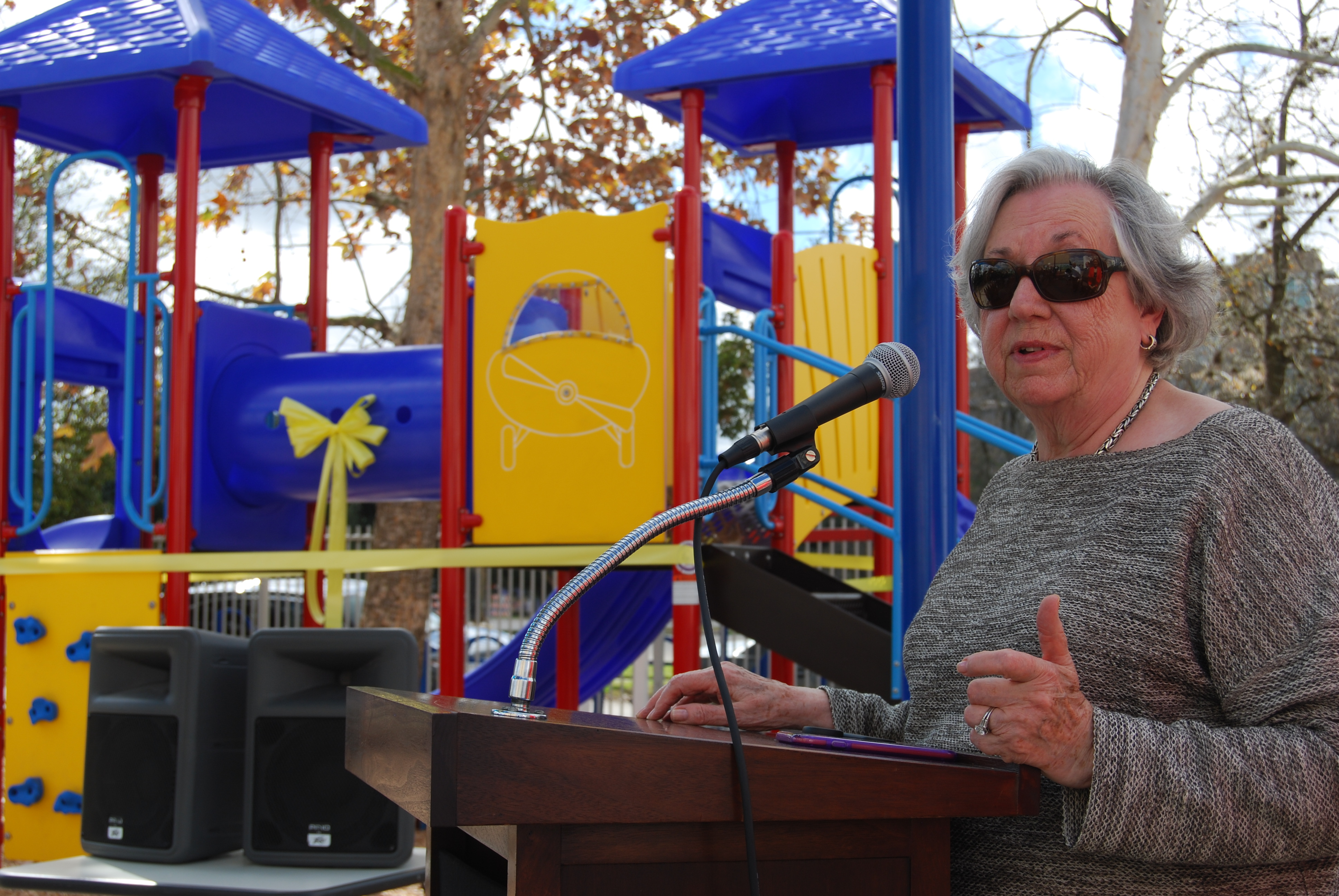 Speaker at Playground Unveiling